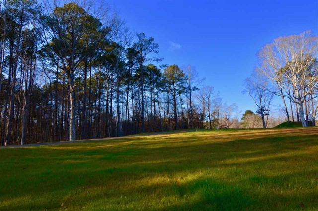 Lot 22 Charlotte Lane, Gadsden, AL 35901 (MLS #1111413) :: The Pugh Group RE/MAX Alliance