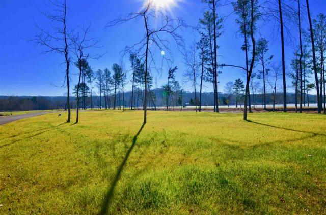 Lot 12 Breezy Pointe, Gadsden, AL 35901 (MLS #1111448) :: The Pugh Group RE/MAX Alliance