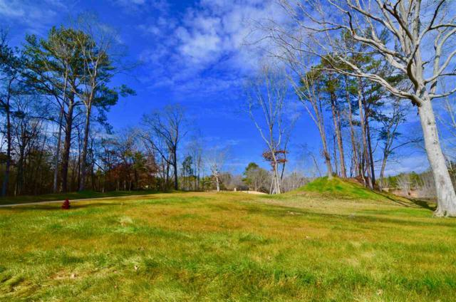 Lot 27 Charlotte Lane, Gadsden, AL 35901 (MLS #1111501) :: The Pugh Group RE/MAX Alliance