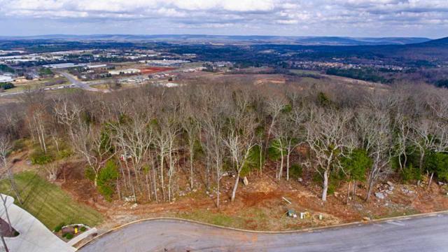 4044 Hawks Way, Huntsville, AL 35811 (MLS #1111716) :: Capstone Realty