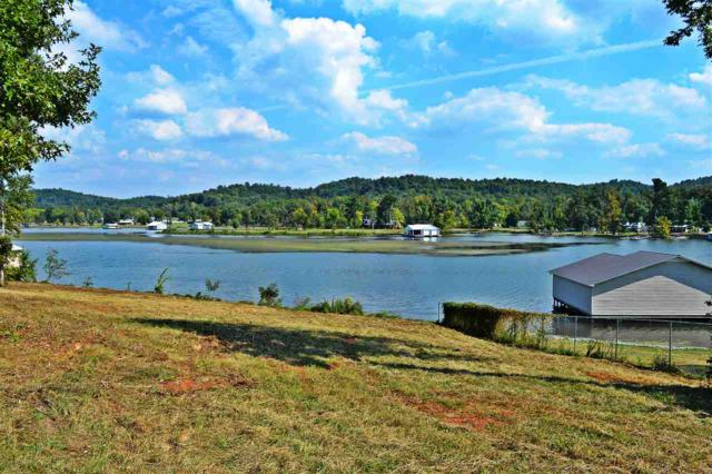 142 Polaris Drive, Guntersville, AL 35976 (MLS #1111871) :: Legend Realty