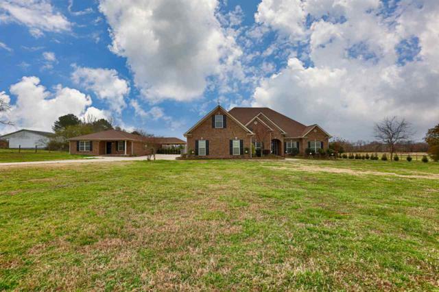 190 Border Line Road, Hazel Green, AL 35750 (MLS #1112296) :: Weiss Lake Realty & Appraisals