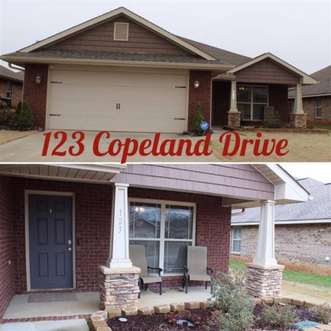 123 Copeland Drive, Madison, AL 35756 (MLS #1112378) :: Capstone Realty