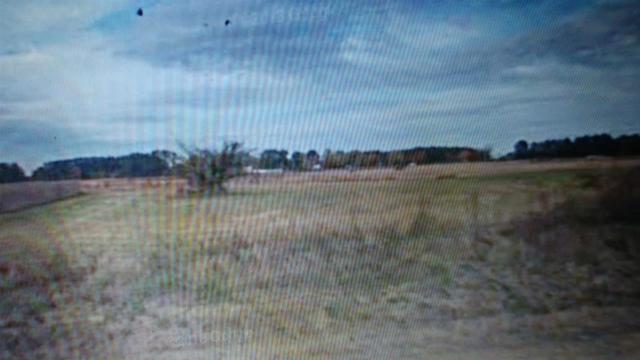 0 Toney School Road, Toney, AL 35773 (MLS #1112464) :: Amanda Howard Sotheby's International Realty