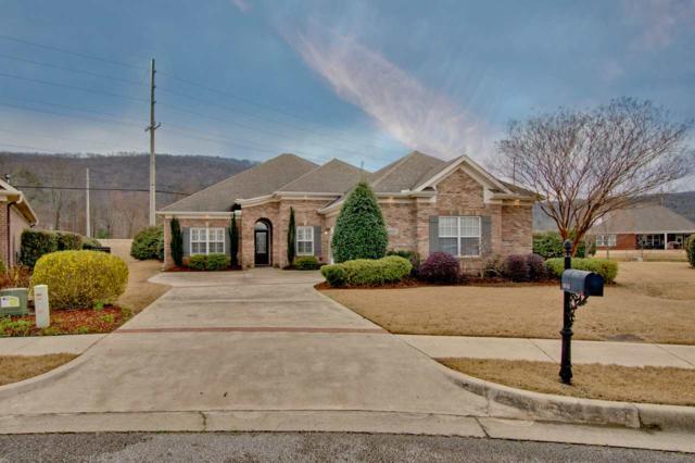 16115 Shropshire Drive, Huntsville, AL 35803 (MLS #1112534) :: Capstone Realty