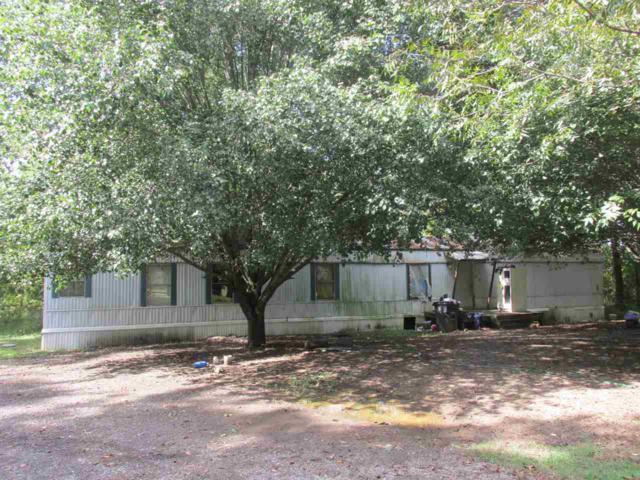 1306 Rabbittown Road, Glencoe, AL 35905 (MLS #1112771) :: Capstone Realty