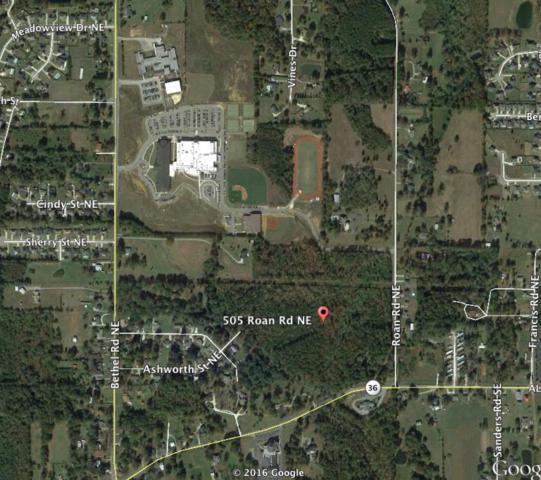 505 Roan Road, Hartselle, AL 35760 (MLS #1112853) :: RE/MAX Distinctive | Lowrey Team