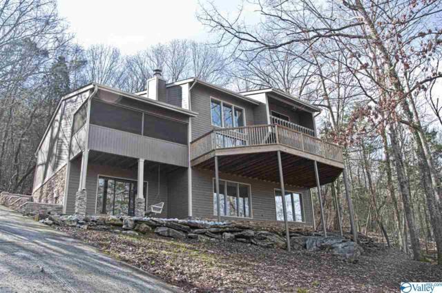 12003 Chimney Hollow Trail, Huntsville, AL 35803 (MLS #1113417) :: Capstone Realty
