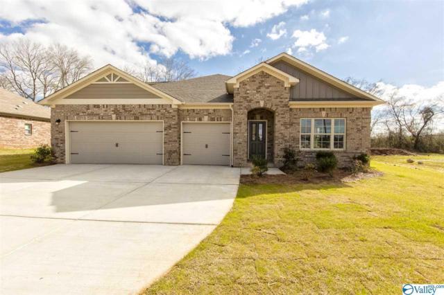 7630 NW Ashor Drive, Huntsville, AL 35806 (MLS #1113565) :: Capstone Realty