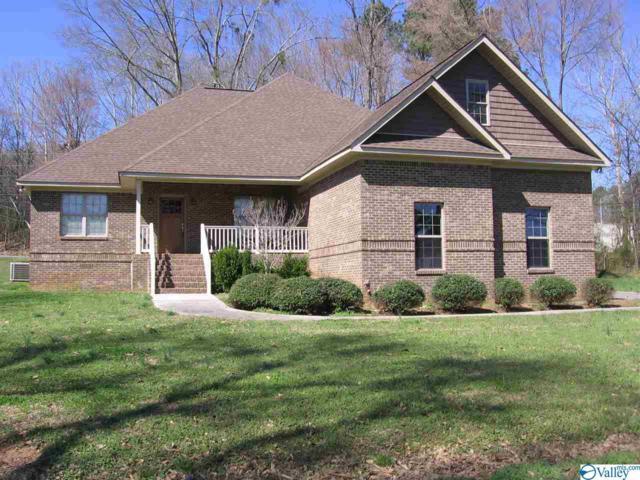 2400 Thomas Avenue, Guntersville, AL 35976 (MLS #1113767) :: Capstone Realty