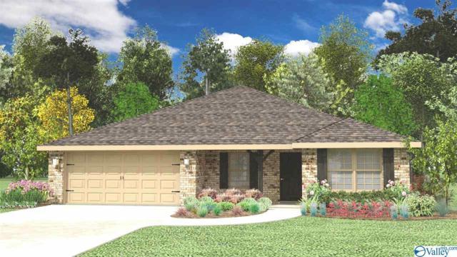 108 Hulsey Lane, Toney, AL 35773 (MLS #1113929) :: Eric Cady Real Estate