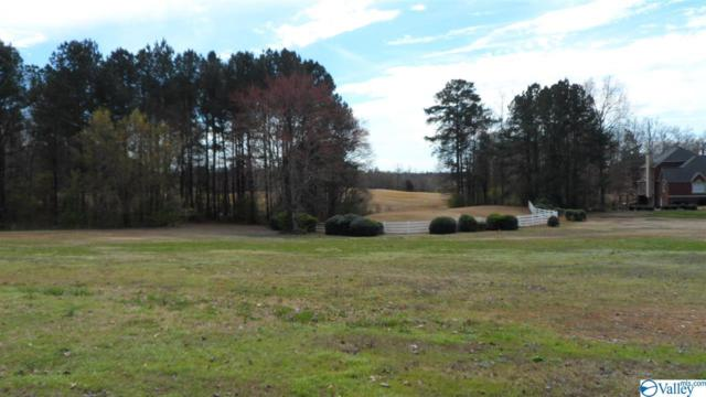 2 Silver Lakes Blvd, Glencoe, AL 35905 (MLS #1113963) :: LocAL Realty