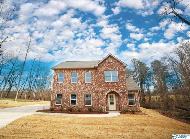 130 Ivy Meadow Circle, Hazel Green, AL 35750 (MLS #1114057) :: Capstone Realty