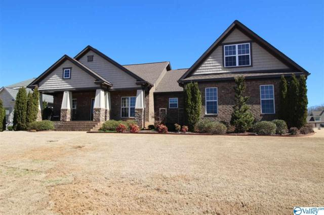 131 Davis Downs Road, Meridianville, AL 35750 (MLS #1114204) :: Amanda Howard Sotheby's International Realty
