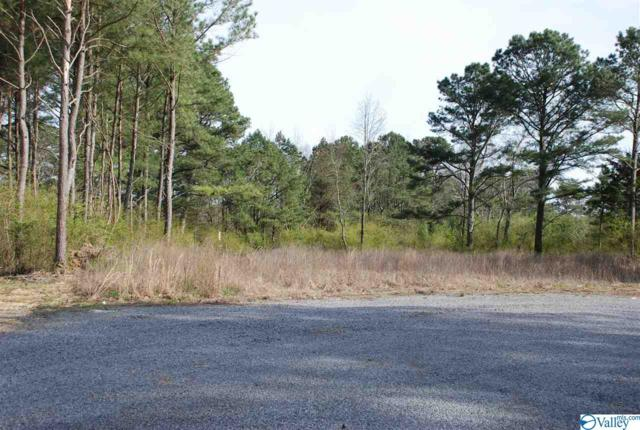 00 Grand Lane, Rainsville, AL 35986 (MLS #1114319) :: Amanda Howard Sotheby's International Realty