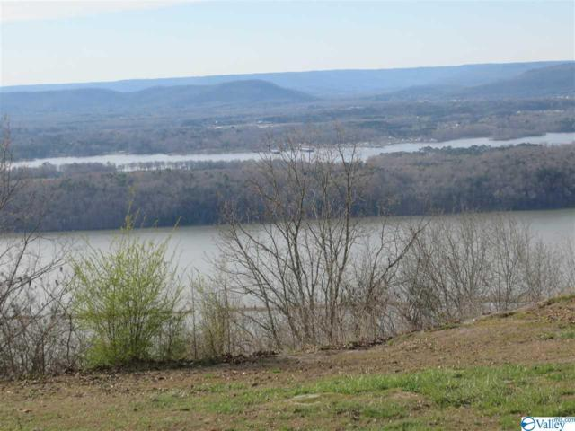 1889 Scenic Drive, Section, AL 35771 (MLS #1114400) :: Legend Realty