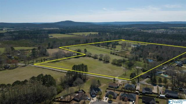 562 Wilson Mann Road, Owens Cross Roads, AL 35763 (MLS #1114577) :: Eric Cady Real Estate