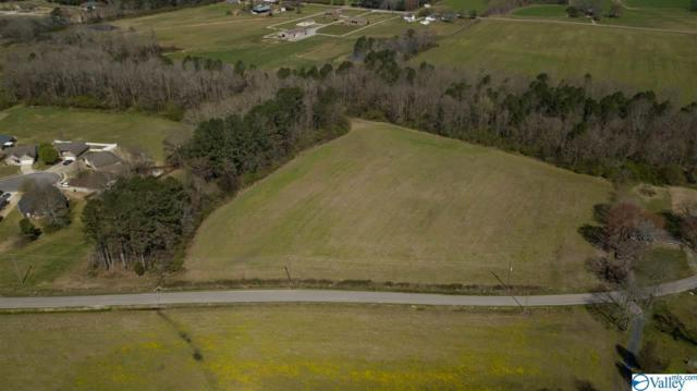 Wilson Mann Road, Owens Cross Roads, AL 35763 (MLS #1114581) :: Eric Cady Real Estate
