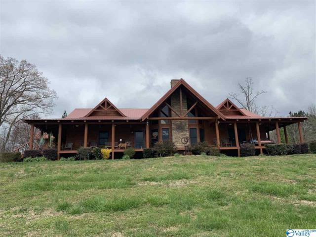 1531 County Road 144, Gaylesville, AL 35973 (MLS #1114588) :: Weiss Lake Realty & Appraisals