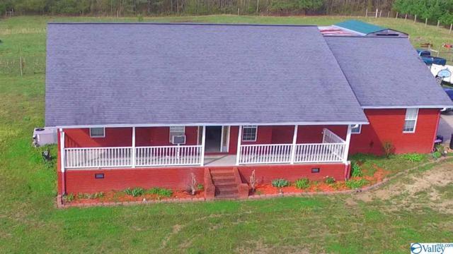3600 County Road 843, Dawson, AL 35963 (MLS #1114625) :: Intero Real Estate Services Huntsville