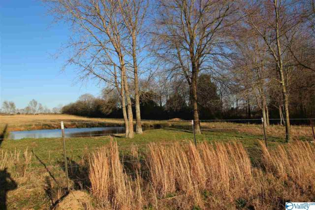 tract 7 B H Reeves Road, New Market, AL 35761 (MLS #1114703) :: The Pugh Group RE/MAX Alliance