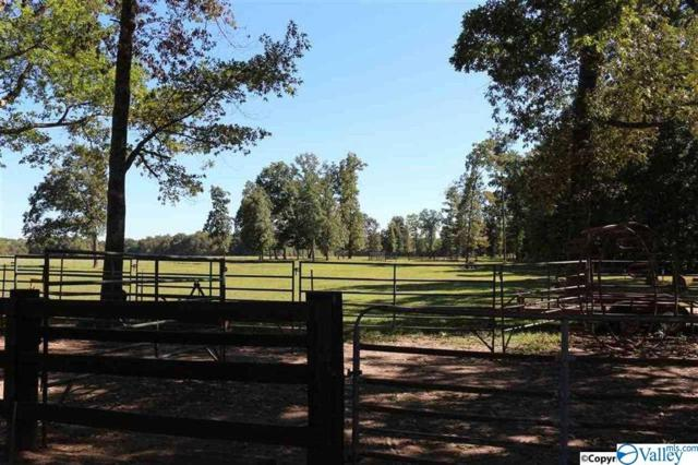 24316 Thach Road, Elkmont, AL 35620 (MLS #1114726) :: The Pugh Group RE/MAX Alliance