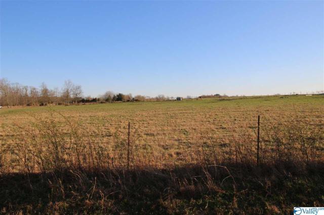 Borderline Road, New Market, AL 35761 (MLS #1114773) :: Intero Real Estate Services Huntsville
