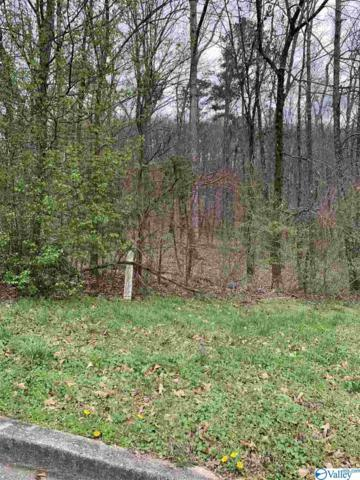 LOT 23 Hualapai Circle, Guntersville, AL 35976 (MLS #1114809) :: RE/MAX Unlimited