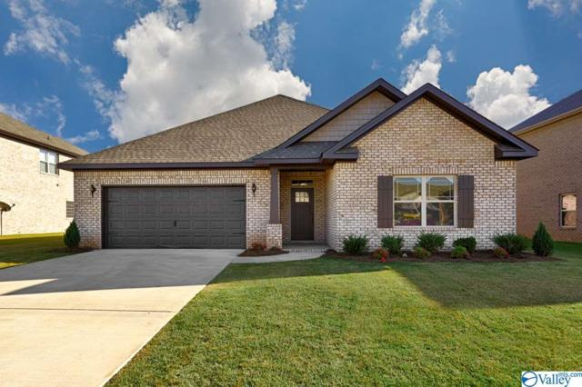 238 Iron Circle, Meridianville, AL 35759 (MLS #1114895) :: Capstone Realty