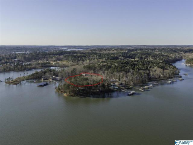 100 County Road 176, Crane Hill, AL 35053 (MLS #1114957) :: Capstone Realty