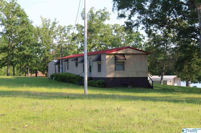 300 County Road 625, Cedar Bluff, AL 35959 (MLS #1115361) :: RE/MAX Distinctive | Lowrey Team