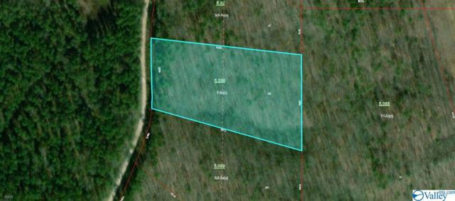 23 County Road 861, Gaylesville, AL 35973 (MLS #1115556) :: RE/MAX Distinctive | Lowrey Team