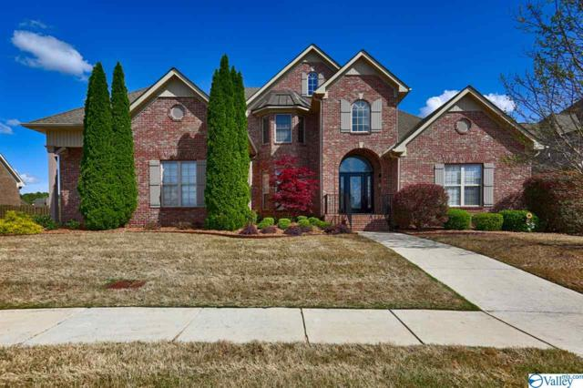 203 Morningwalk Lane, Huntsville, AL 35824 (MLS #1115595) :: Eric Cady Real Estate