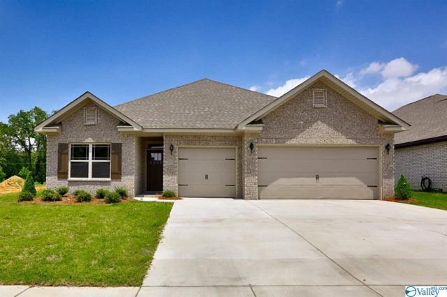 192 Holly Fern Drive, Harvest, AL 35749 (MLS #1115668) :: Capstone Realty