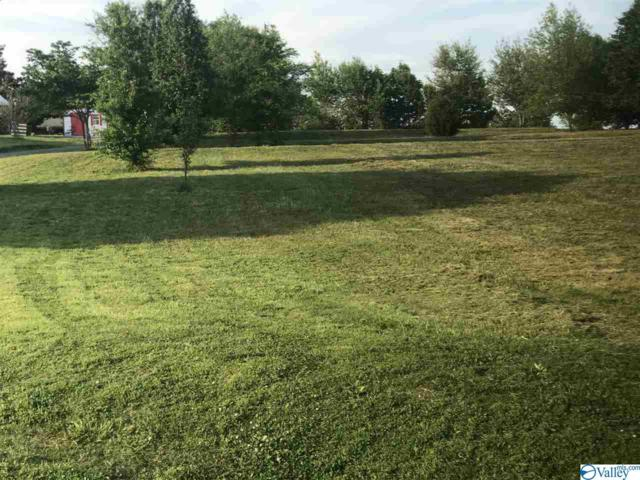 294 Brown Acres Road, Guntersville, AL 35976 (MLS #1115744) :: Capstone Realty