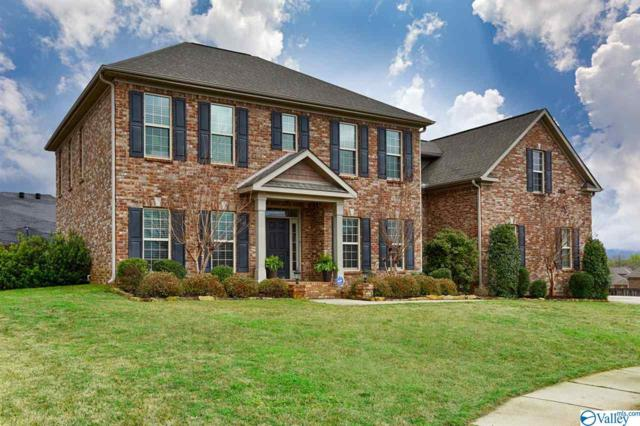 4513 Stone Park Circle, Owens Cross Roads, AL 35763 (MLS #1115916) :: Amanda Howard Sotheby's International Realty
