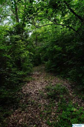 0 Todd Mill Road, Huntsville, AL 35803 (MLS #1116149) :: Legend Realty