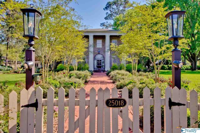 25018 Lauderdale Street, Mooresville, AL 35649 (MLS #1116229) :: Capstone Realty