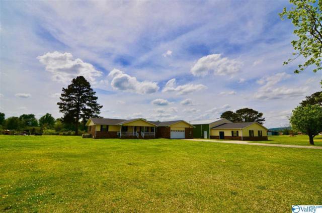4720 Crimson Sage Drive, Southside, AL 35907 (MLS #1116310) :: Capstone Realty