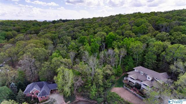 116 Broken Bow Lane, Madison, AL 35758 (MLS #1116335) :: Amanda Howard Sotheby's International Realty