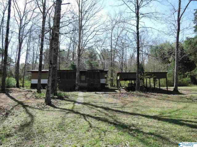 120 County Road 3086, Double Springs, AL 35553 (MLS #1116491) :: The Pugh Group RE/MAX Alliance