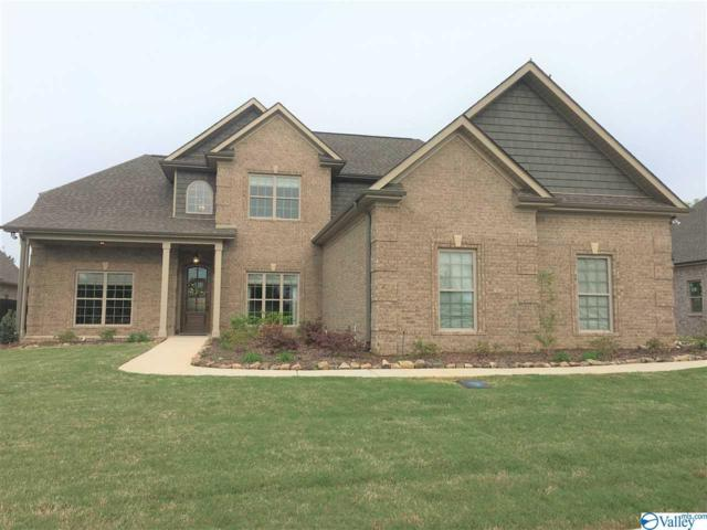 22543 Bluffview Drive, Athens, AL 35613 (MLS #1116613) :: Capstone Realty