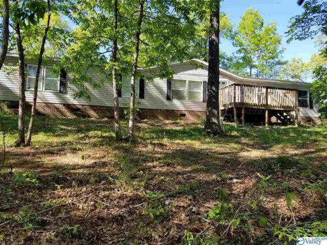 105 Huckleberry Circle, Odenville, AL 35120 (MLS #1116746) :: Legend Realty