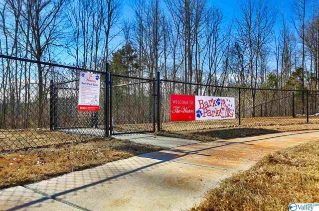 701 SW Spritz Drive, Huntsville, AL 35824 (MLS #1116772) :: Intero Real Estate Services Huntsville