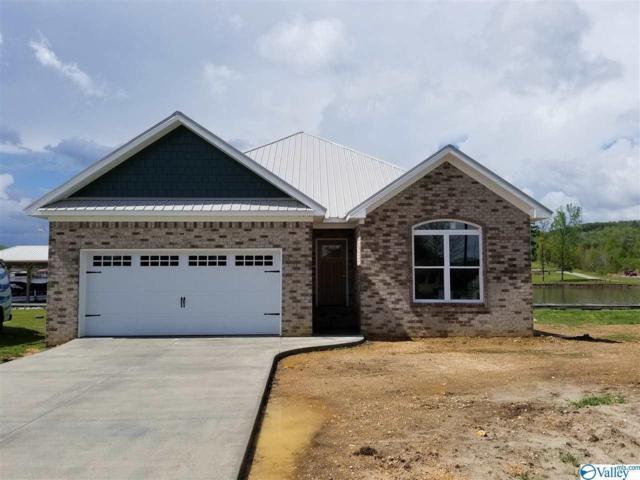 36 Windward Loop, Ohatchee, AL 36271 (MLS #1116800) :: Eric Cady Real Estate