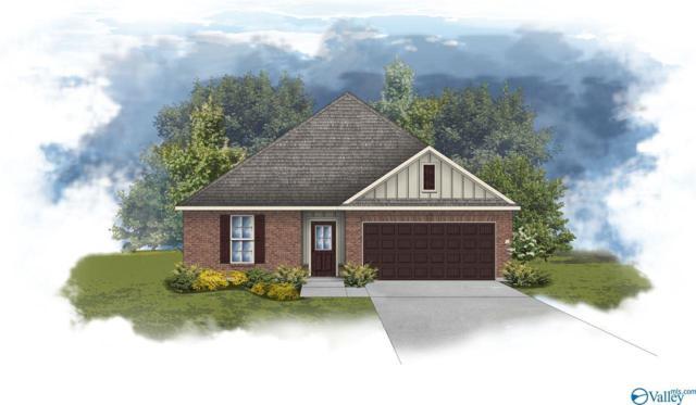 179 Summer Pointe Lane, Huntsville, AL 35806 (MLS #1116805) :: Legend Realty