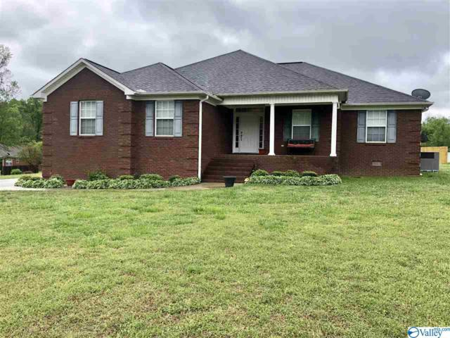 355 Stoney Mountain Drive, Guntersville, AL 35976 (MLS #1116922) :: The Pugh Group RE/MAX Alliance
