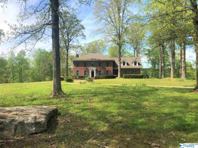 1850 Nelson Drive, Florence, AL 35630 (MLS #1117006) :: Capstone Realty
