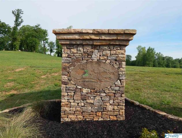 Greystone Pass, Guntersville, AL 35976 (MLS #1117016) :: Capstone Realty