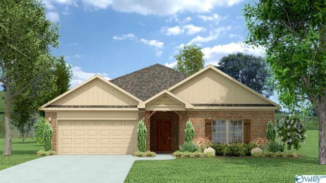 21 Beaver Brook Place, Toney, AL 35773 (MLS #1117066) :: Intero Real Estate Services Huntsville